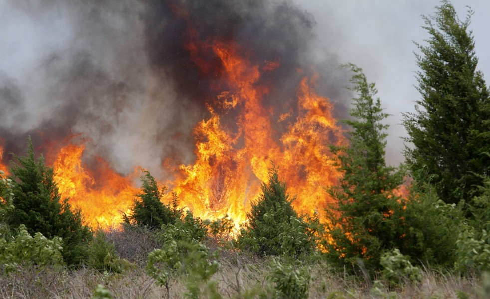 central valley forest fires