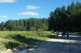 Дорога с.Верх-Катавка