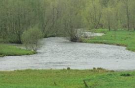 Природа вокруг села Бедярыш